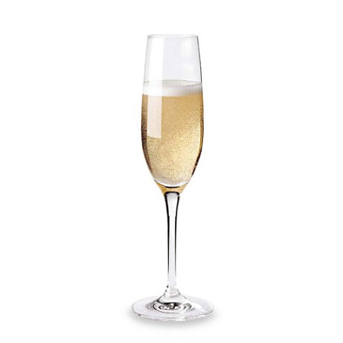 Fusion Classic Champagne Flutes by Wine Enthusiast in Focus