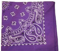 Bandana with Paisley Design by Purpletopia in A Walk in the Woods