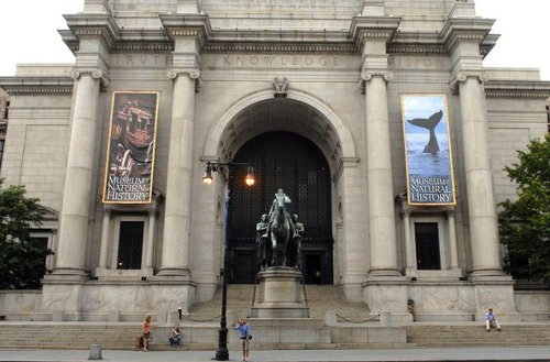 American Museum Of Natural History New York City, New York in Night at the Museum: Secret of the Tomb