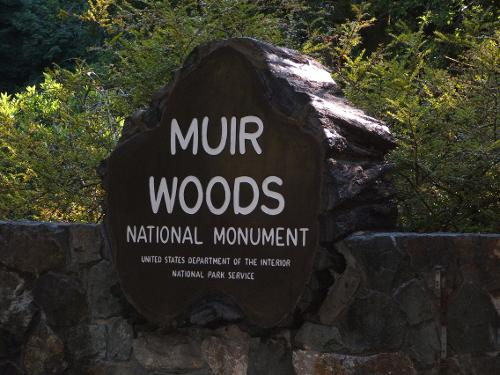Muir Woods National Monument Mill Valley, CA in Dawn of the Planet of the Apes