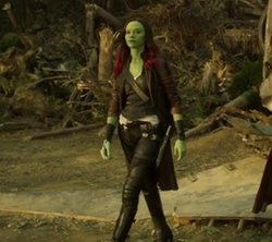 Custom Made Gamora Costume by Judianna Makovsky (Costume Designer) in Guardians of the Galaxy Vol. 2