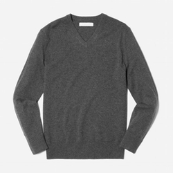 The Cashmere V-Neck Sweater by Everlane in New Girl