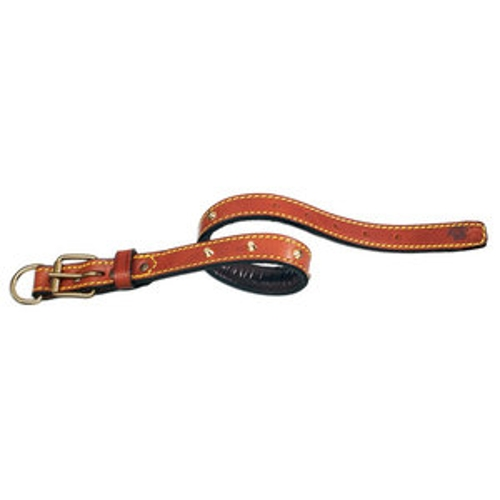 Classic Padded Leather Dog Collar by PetEgo in Max