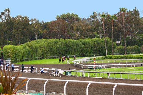 Santa Anita Park Arcadia, California in Secret in Their Eyes