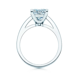 Platinum Band Ring by Tiffany Grace in Ballers