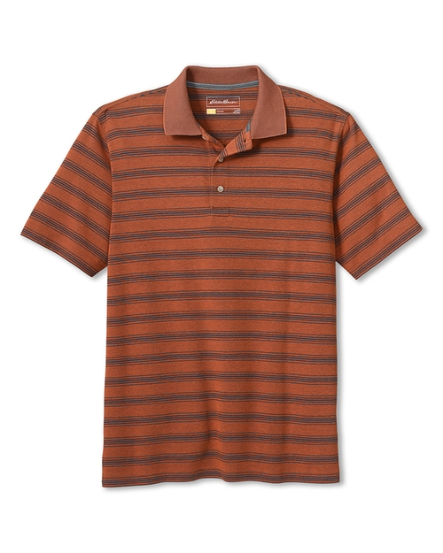 Men's Voyager II Performance Stripe Polo Shirt by Eddie Bauer in Blow