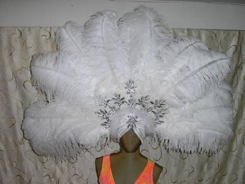 Ostrich Fan with Sequin Appliqués Headdress by Paradise Costumes in The Great Gatsby