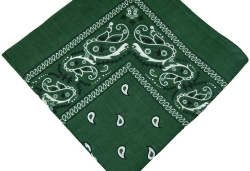 """Hunter Green"" Double Sided Paisley Bandanas by ACC in Magic Mike XXL"