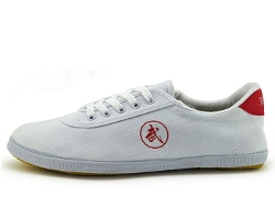 Canvas Tai Chi Shoes by Double Star in Man of Tai Chi