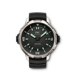 Aquatimer 2000 Automatic Titanium Watch by IWC in Mechanic: Resurrection