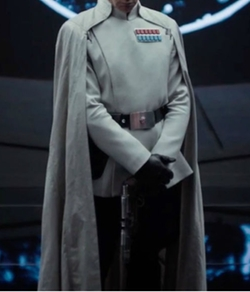 Custom Made Imperial Officer Costume by David Crossmanand Glyn Dillon (Costume Designers) in Rogue One: A Star Wars Story