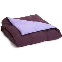 All Season Reversible Down Alternative Comforter by Simple Luxury in Laggies