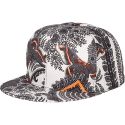 Paisley And Butterfly Printcap by Givenchy in Empire