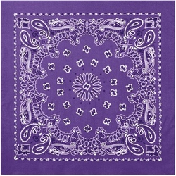 Paisley Bandana by Rothco in Wet Hot American Summer