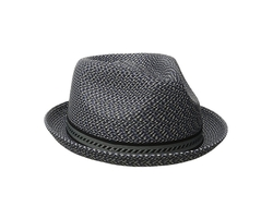 Mannes Trilby Hat by Bailey of Hollywood in Logan