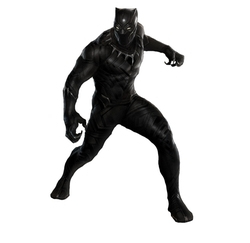 Custom Made Black Panther Suit by Ruth E. Carter (Costume Designer) in Black Panther