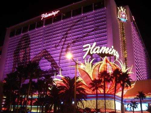 Flamingo Las Vegas Las Vegas, Nevada in The Hangover