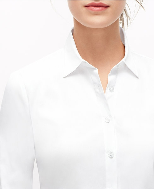 Petite Perfect Shirt by Ann Taylor in The Choice