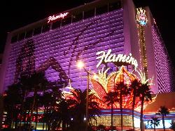 Las Vegas, Nevada by Flamingo Las Vegas in Godzilla