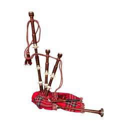Half Size Sheesham Bagpipes by Roosebeck in Popstar: Never Stop Never Stopping