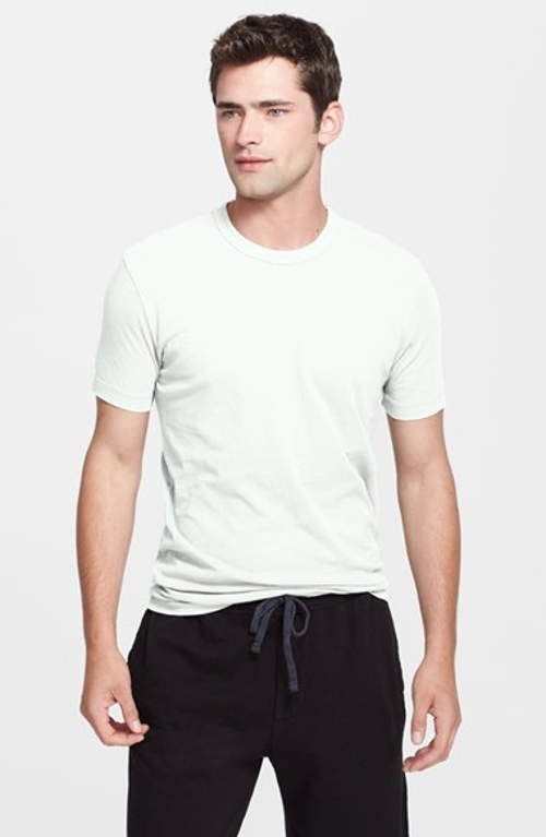 Crewneck Jersey T-Shirt by James Perse in Fight Club