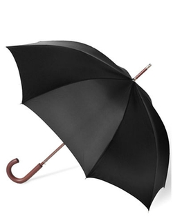 Stately Auto Umbrella by Totes in Bridge of Spies