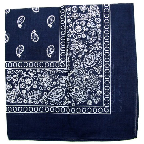 Paisley One Dozen Cowboy Bandanas by Kaiser in The Best of Me