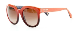 Casey Square Sunglasses by Coach in Ride Along 2
