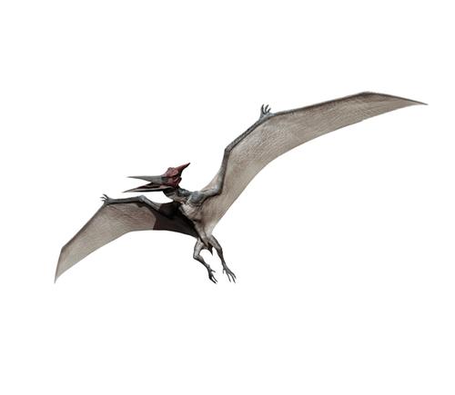 Pteranodon by Seth Engstrom & Dean Sherriff (Concept Artist) in Jurassic World