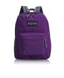 Superbreak Backpack by Jansport in Mr. Robot