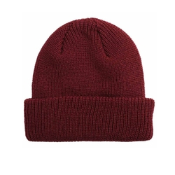 Watchcap Beanie Hat by Active in Daddy's Home 2
