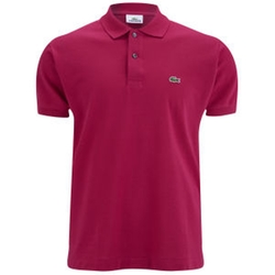 Cotton Polo Shirt by Lacoste in The 33