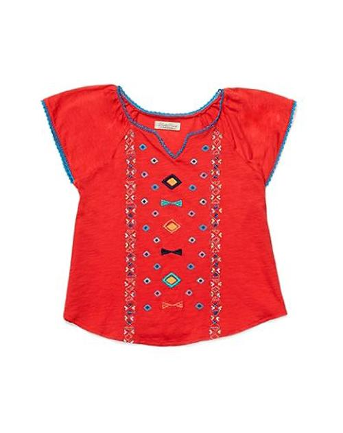 Embroidered Top by Lucky Brand in Neighbors
