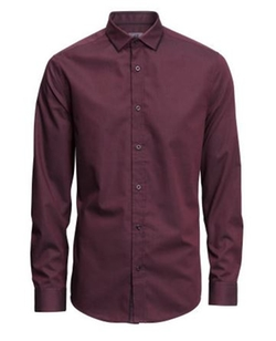 Premium Cotton Shirt by H&M in Regression