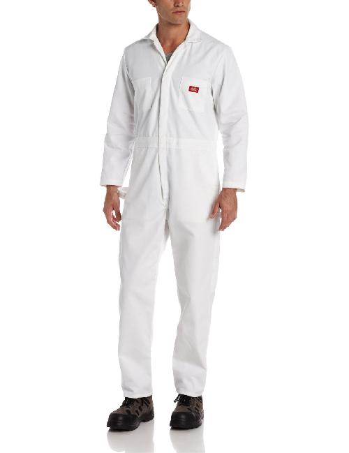 Men's Long Sleeve Painters Coverall by Dickies in Transcendence