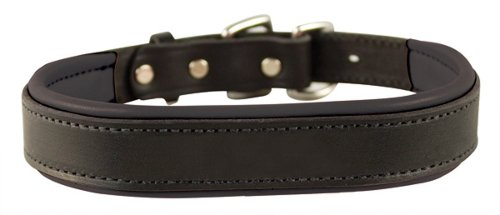 Padded Leather Dog Collar by Perri's in John Wick