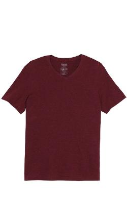 Favorite Heathered V Neck T-Shirt by Vince in Addicted