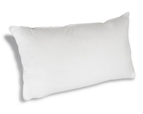 Hypoallergenic Queen Bed Pillow by Down Etc in Silver Linings Playbook
