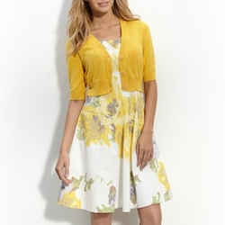 Floral A-Line Dress by Maggy London in The Big Bang Theory