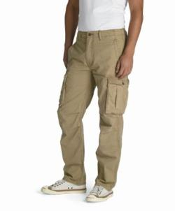 Ace Cargo Pants by Levi's in Wish I Was Here