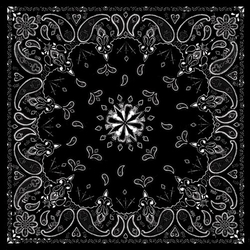 Paisley Print Bandana by Zanheadgear in Youth