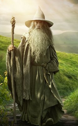 Custom Made Gandalf The Grey's Costume by Ann Maskrey & Bob Buck (Costume Designer) in The Hobbit: The Battle of The Five Armies