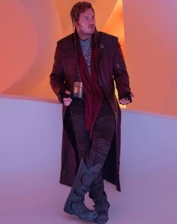 Custom Made Star Lord Costume by Judianna Makovsky (Costume Designer) in Guardians of the Galaxy Vol. 2
