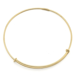 Thin Expandable Wire Bangle by Alex And Ani in Sisters