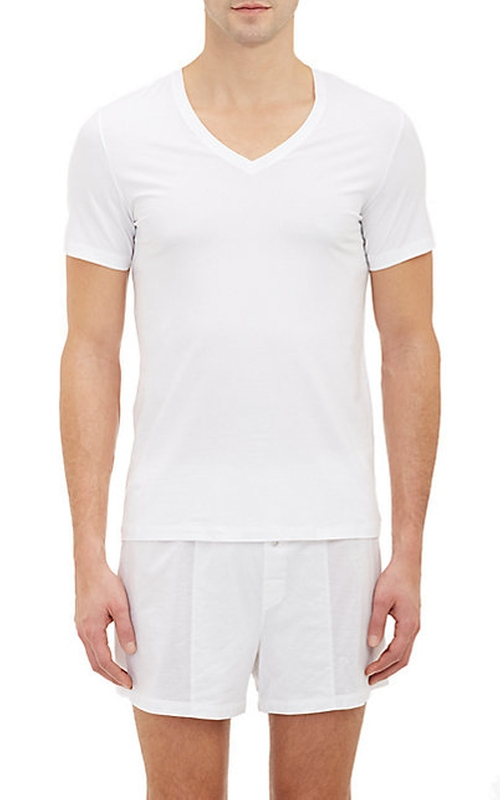 Superior V-Neck T-Shirt by Hanro in We Are Your Friends