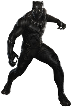 Custom Made Black Panther Suit by Judianna Makovsky (Costume Designer) in Captain America: Civil War