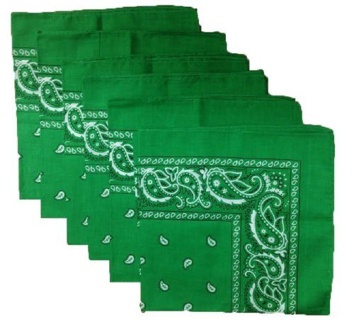 Paisley Bandana Scarf by We got It All in Get Hard