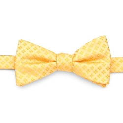 Keegan Pretied Bow Tie by Croft & Barrow in She's The Man