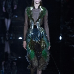 Fall 2013 Feather Dress by Gucci in Empire