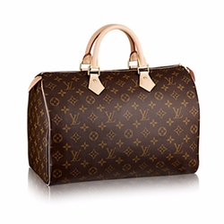 Speedy 35 Handbag by Louis Vuitton in Empire